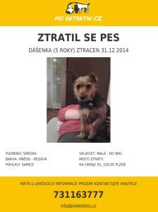 Psi-detektiv-dasenka-plzen-mesto-2014-12-31
